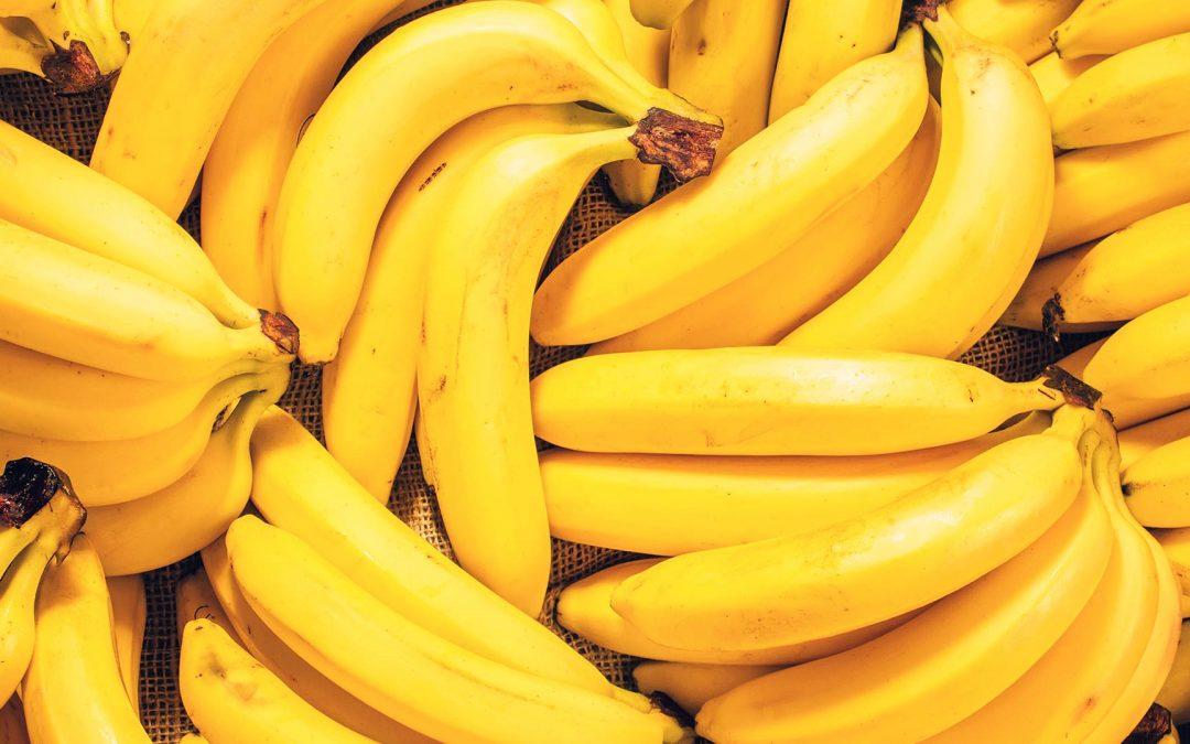 Ohne sie geht es nicht: die Banane!